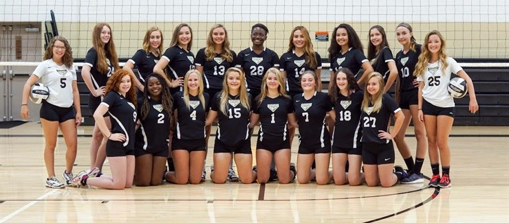 The Windham High School 2017 Volleyball Team