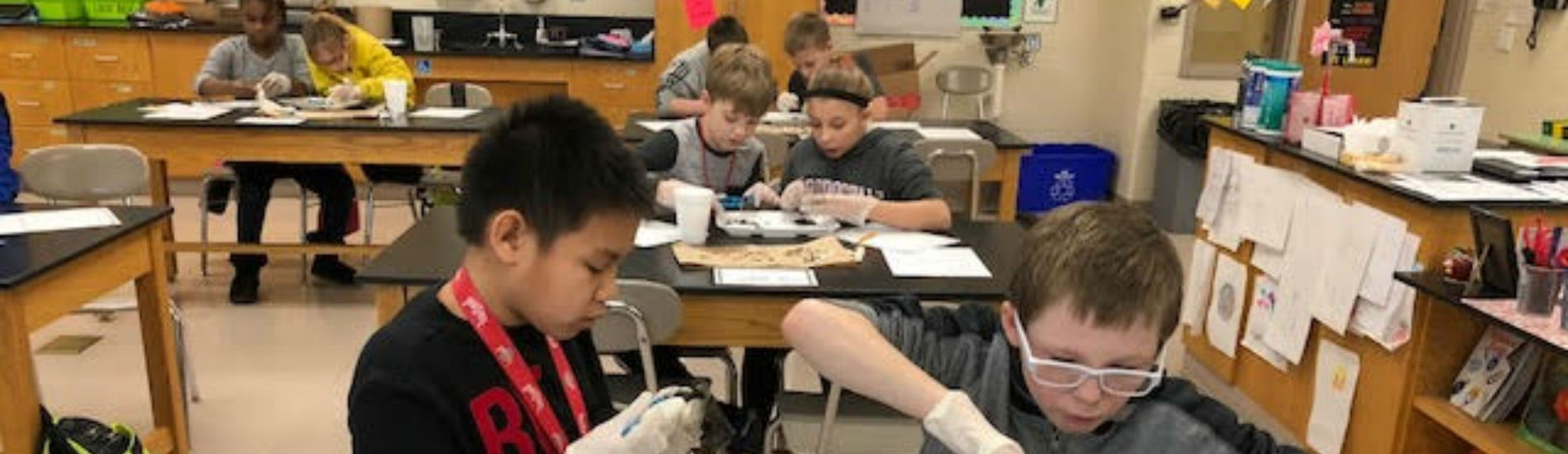 The 5th graders learn to dissect in science class!